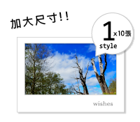 明信片(加大單款10張為一組)